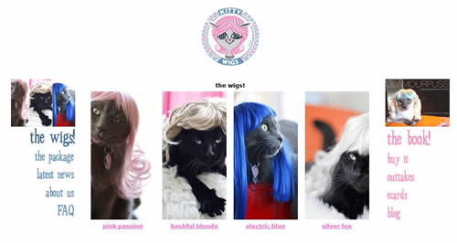 wigs-for-cats
